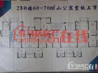 中禾英郡23#楼公寓平面图